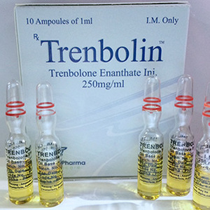 Trenbolin (ampoules) ( 10 ampoules (250mg/ml) )