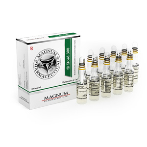 Magnum Bold 300 ( 10 ampoules (300mg/ml) )